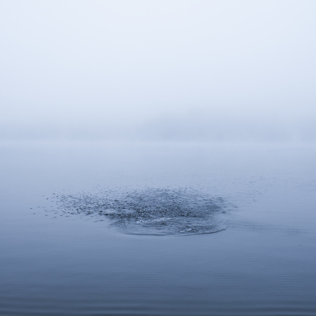 , 'Lake Megunticook, Camden, Maine,' , Dowling Walsh