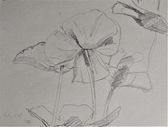 Alex Katz, 'Primrose 2', ca. 1960, Clarke Gallery