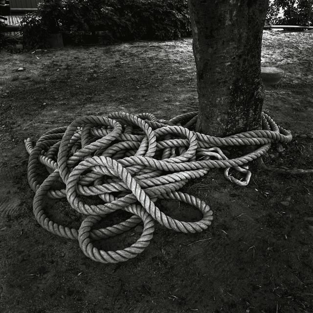 , '情緒地景-麻繩  Seeing and Construction-Rope,' 2005, POCKET FINE ARTS