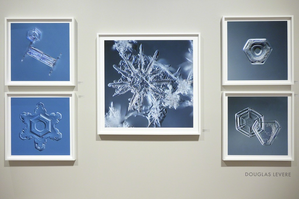 Douglas Levere's Snowflake images; installed at photo-eye Gallery as a part of FIRE AND ICE.