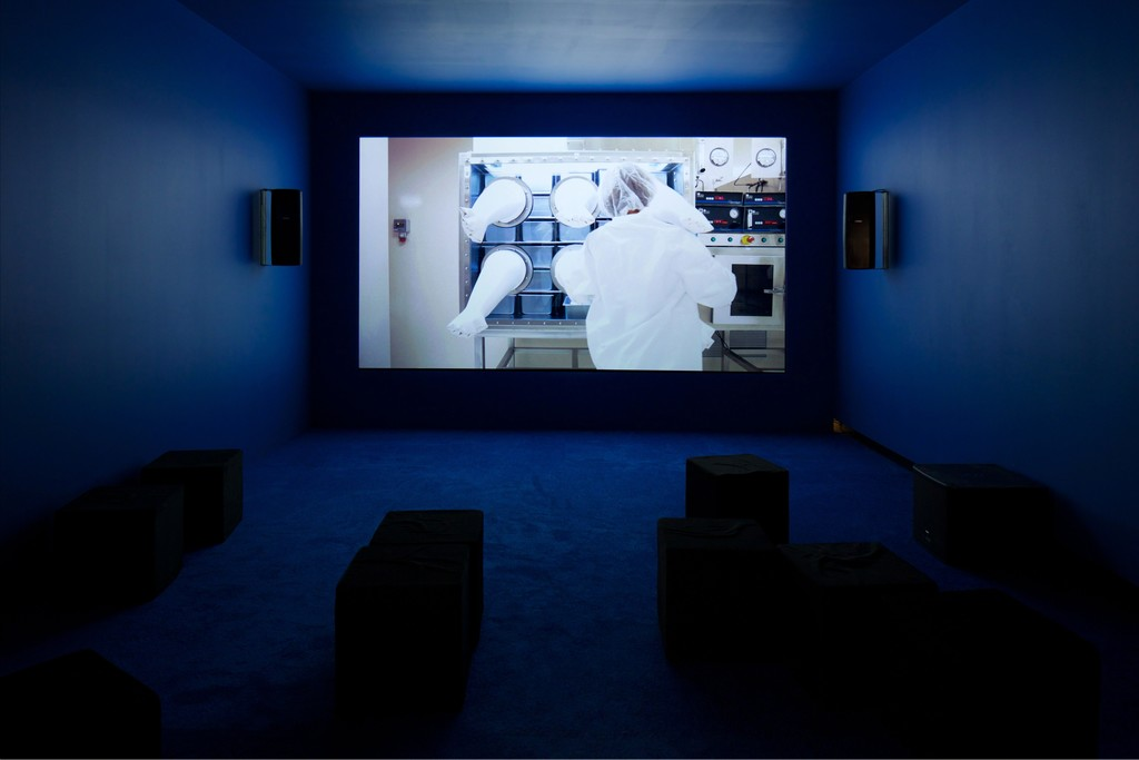 Installation view of Camille Henrot's Gross Fatigue, 2013, in Affinity Atlas, Tang Teaching Museum, 2015