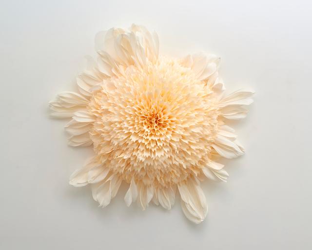 , 'Specimen E (Platinum Blonde) ,' 2019, Eleanor Harwood Gallery