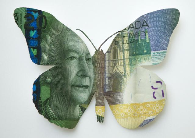 , 'Canada Papilionumismia,' 2016, RoFa Projects