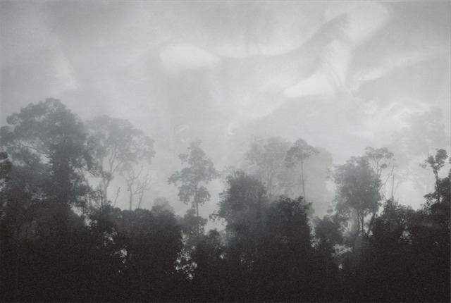 Lisa Roet, 'The Forest 2', 2000-2001, MARS