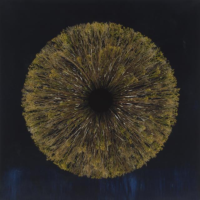 , 'Vanishing Light 10,' 2018, Lisa Sette Gallery