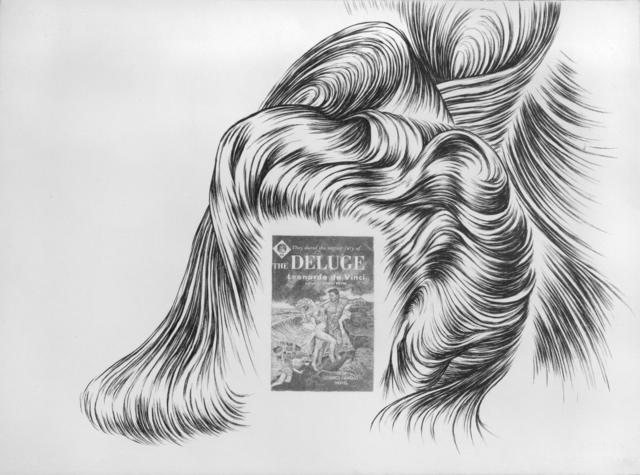 ", 'Hair ""Deluge"" ,' 2012, Simon Lee Gallery"