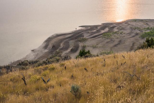 , 'Hard Seasons: Drought,' , Robischon Gallery