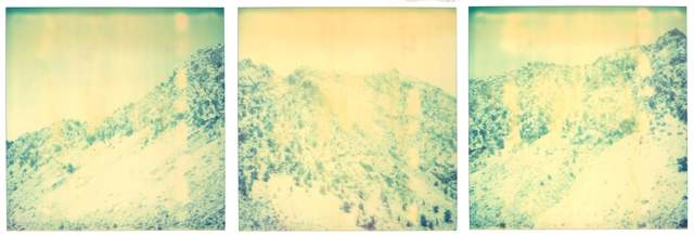 Stefanie Schneider, 'Memories of Green - triptych', 2003, Photography, Analog C-Print, hand-printed by the artist on Fuji Crystal Archive Paper, based on a Polaroid, not mounted, Instantdreams
