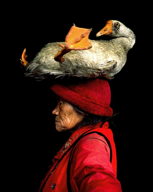 , 'Lady with the Goose II,' Unknown, Hilton Asmus