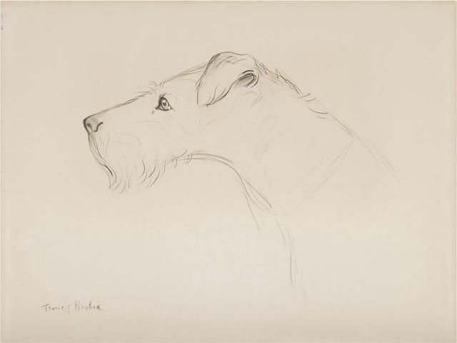 Francis Picabia, 'Chien de profil', ca. 1925, BAILLY GALLERY