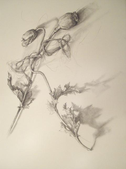 , 'Beautiful Dreamer,' 2014, Resource Art