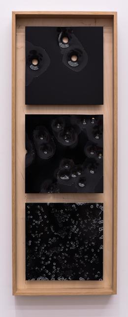 , 'Bird, Buck, Slug: Black on Black #1 2017,' 2017, Mugello Gallery