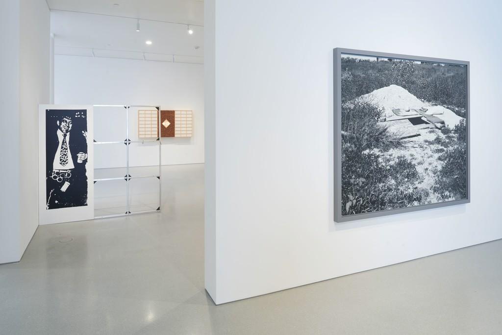 Installation view. Artwork, left to right: © Cady Noland, © Anicka Yi, © Jeff Wall. Photo: Glen Cheriton. Courtesy Gagosian.
