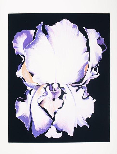 Lowell Nesbitt, 'White Iris on Black', 1982, Heritage Auctions