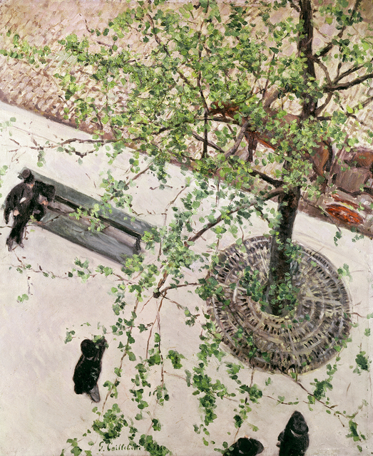 , 'The boulevard Seen From Above,' 1880, Museo Thyssen-Bornemisza