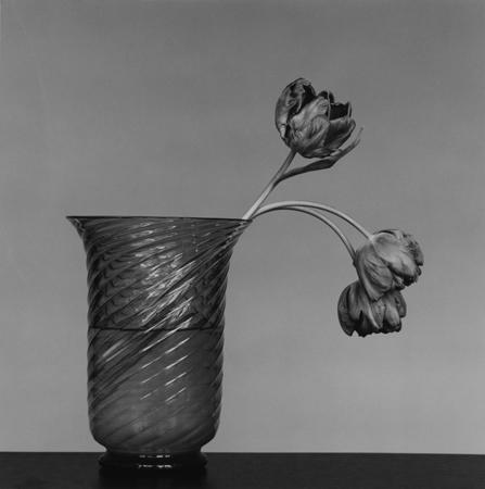 , 'Tulip,' 1982, Mai 36 Galerie