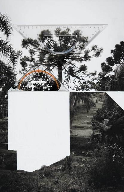 , 'Bicho do Paraná 006,' 2015, SIM Galeria