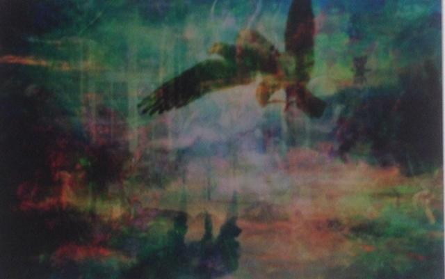 , 'WildistheWindinChristiania,' 2012, Gitana Rosa Gallery