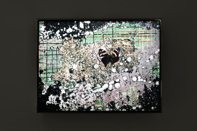, 'Caterpillar,' 2017, Galerie Christophe Gaillard