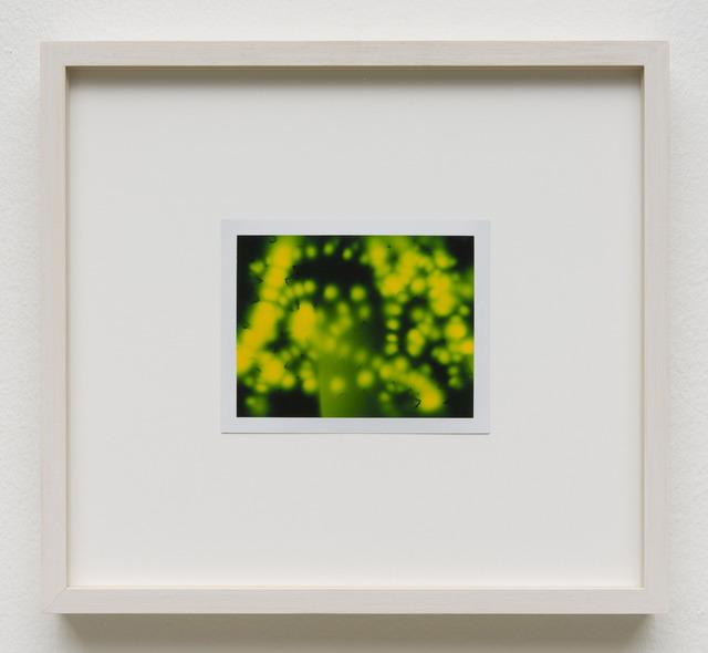 , 'Photuris #14,' 2013, Galerie Crone