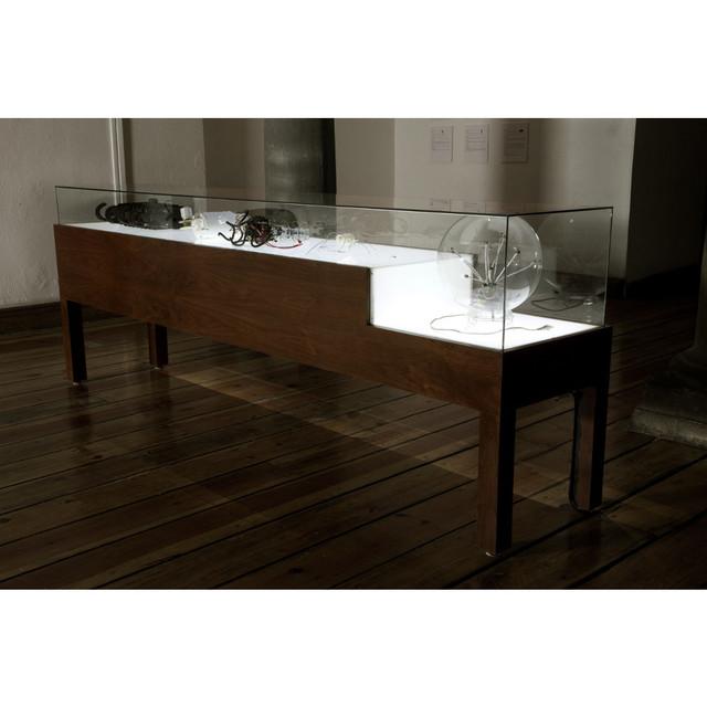 , 'Parásitos Urbanos - Insectarium,' 2006-2007, Yam Gallery