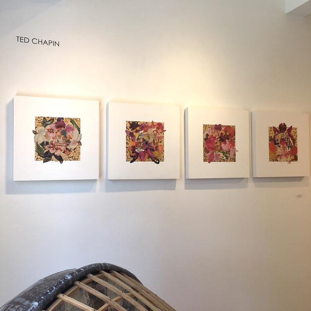 , 'Borden Orchids, quadriptych; Installation view,' 2017-2018, AMP: Art Market Provincetown