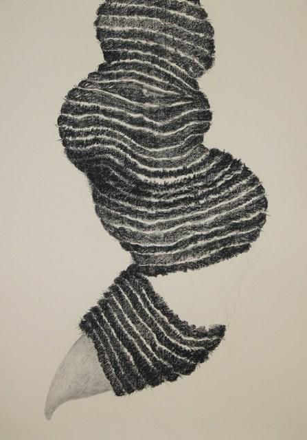 , 'Boitatá #1,' 2013, Progetti