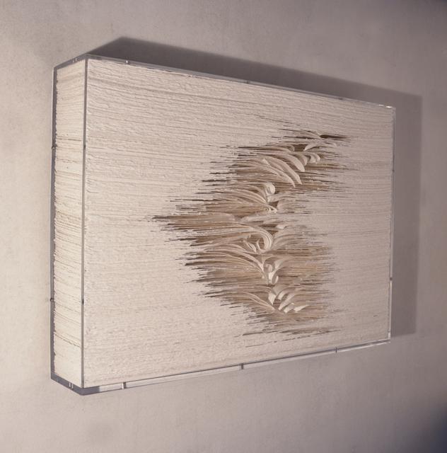 , 'Paperwall 2013-022,' 2013, Joerg Heitsch Gallery