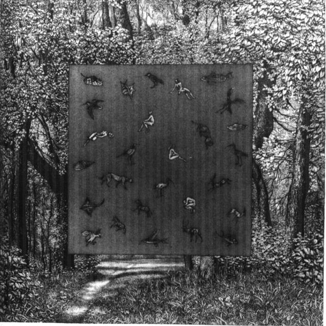 nele zirnite, 'Green Frame', 1992, Turner Carroll Gallery