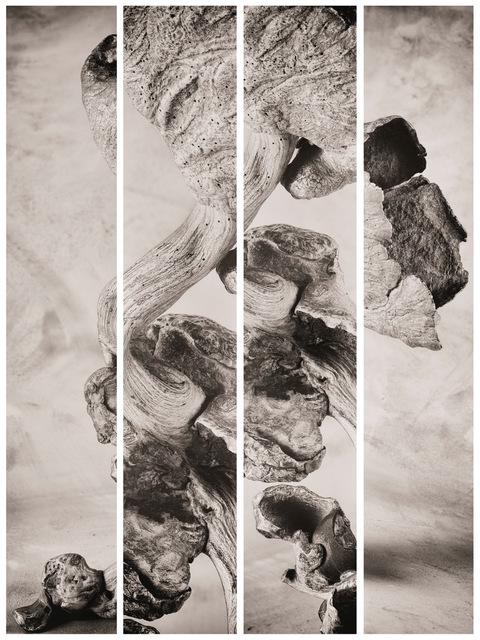 , 'Synoptikos II,' 2019, Rasti Chinese Art