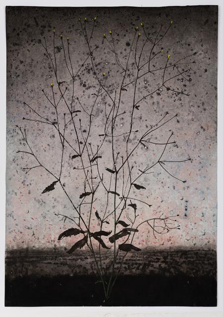 Michael Canning, 'Dust Secrets VI', 2018-2019, REITER