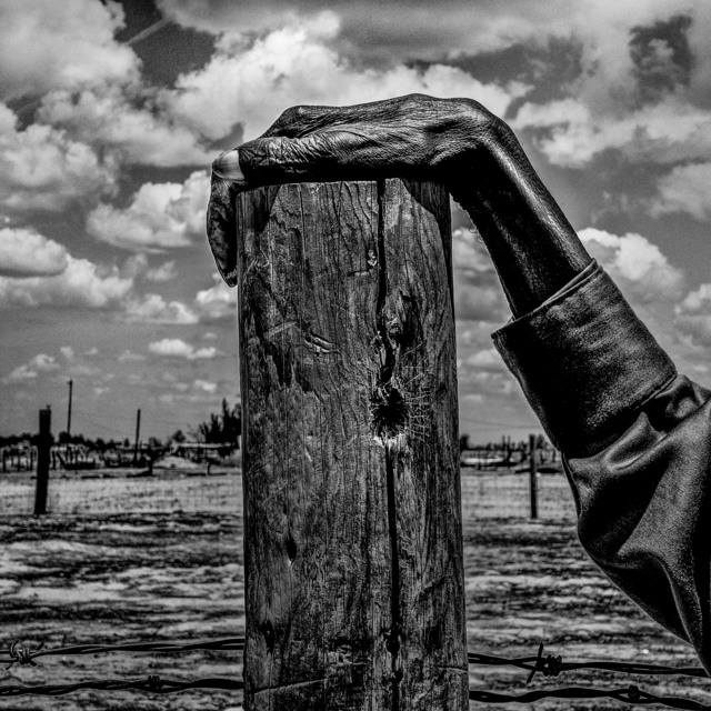 , 'USA. Allensworth, California. Fence post. Allensworth has a population of 471 and 54% live below the poverty level.,' 2014, Magnum Photos