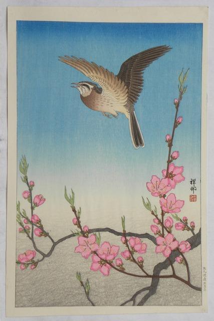 , 'Skylark in Flight Above Blossoming Peach,' ca. 1931, Scholten Japanese Art