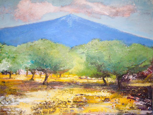 , '500 Year Old Olive Trees, Mt. Etna,' 2018, Sarah Wiseman Gallery