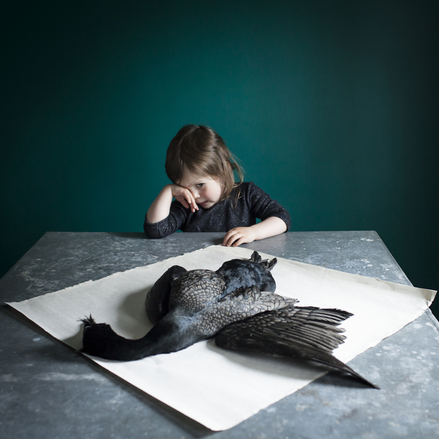 , 'Scout & the Found Bird,' 2014, photo-eye Gallery