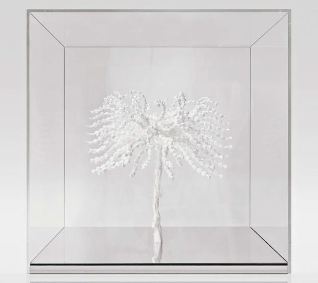 , 'Trifolia Sadica,' 2011, Artvera's Art Gallery