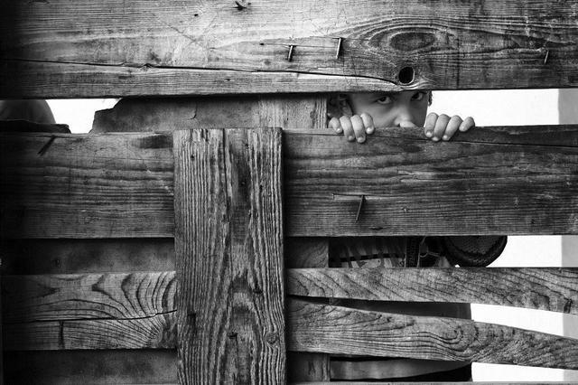 , 'Girl behind the Fence, Deir al Balah,' 2011, Q0DE