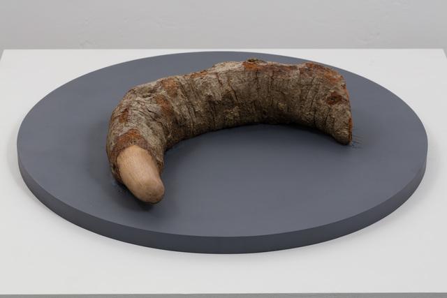 , 'Ouroboros,' 2017, Baik Art