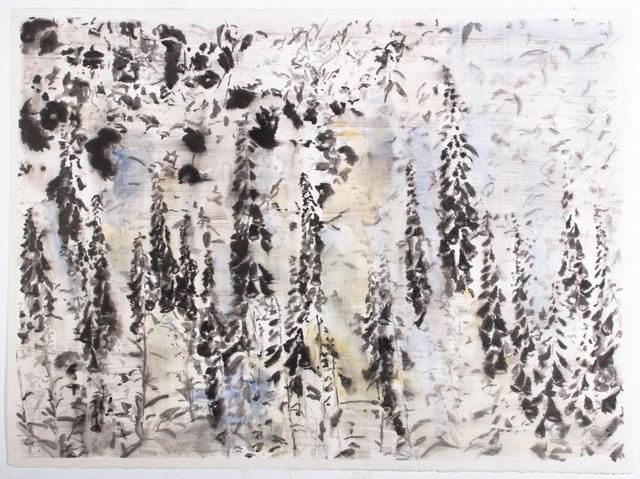 , 'White Garden Negative,' 2015, Parafin