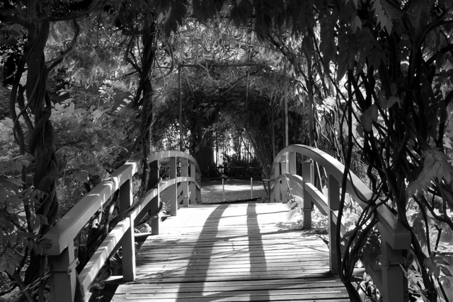 , 'Shadow and Light #8,' , Soho Photo Gallery