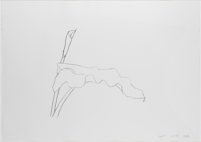 , 'Leaf IV,' 1978, Susan Sheehan Gallery