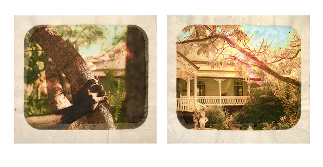 , 'Plantation (Diptych No. 7),' 2009, Roslyn Oxley9 Gallery