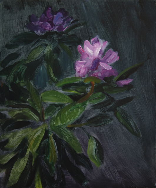 TM Davy, 'Rhododendron', 2016, Independent Curators International (ICI) Benefit Auction
