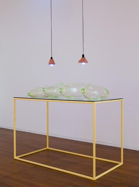 , 'Earthlings,' 2015, Roslyn Oxley9 Gallery