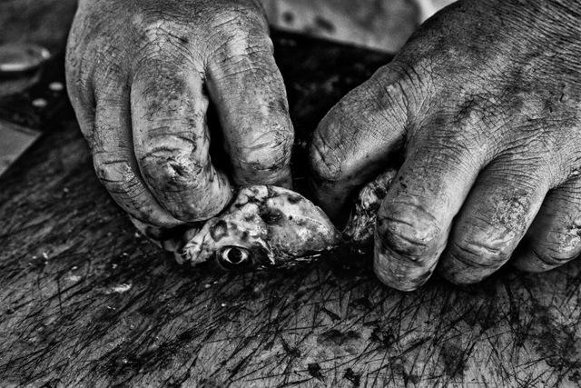, 'Fisherman's Hands, Varkiza,' 2015-2016, Photo12 Galerie