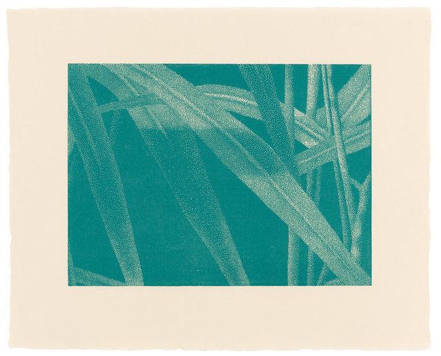 , '»Gräser I, Detail 3, Türkis«,' 2002, Ludorff
