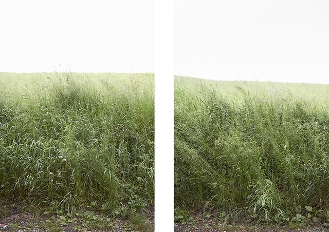 , 'Untitled 023 & 024, Questa Pianura series,' 2014, Galerie Les filles du calvaire