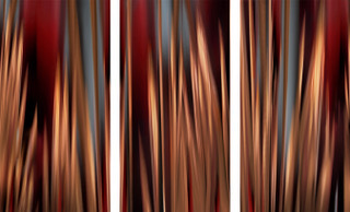 , 'Through the Redwoods #1, #2 & #3, 2018, Triptych,' 2018, William Turner Gallery