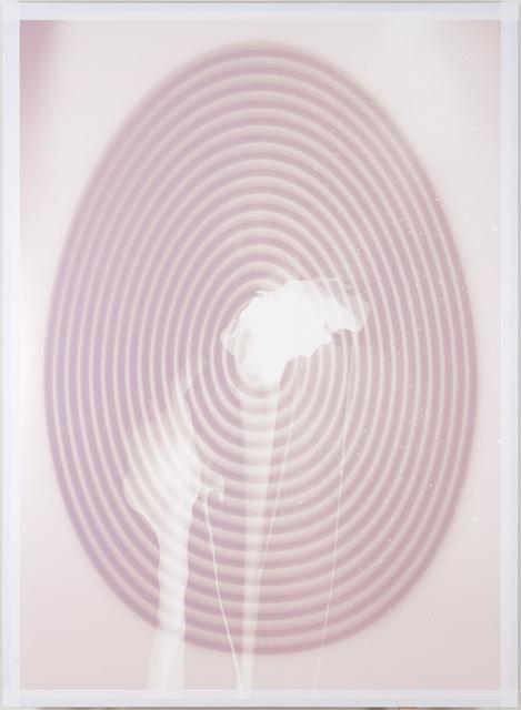 , 'Fertilized Target Egg (Looney Sunn),' 2014, Galerie Peter Kilchmann