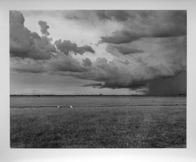, 'Sheep in the storm, Bagé, RS, Brazil, 1996,' 1996, Utópica